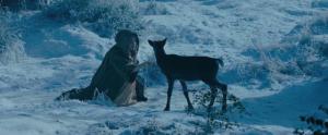 Aurora-with-a-Deer-maleficent-2014-37168514-640-266